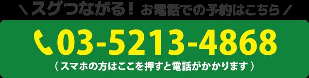 電話番号:03-5213-4868